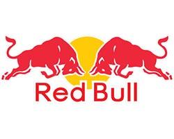 Red Bull vêtements et accessoires vente  en gros